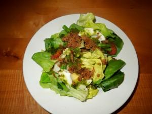 salad dogfish