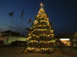 The 2012 tree was donated by the Donahue family.