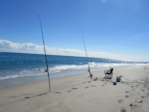 375ed74f4cfb Florida – About My Beaches