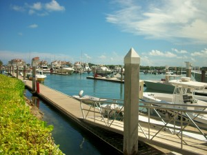 Perfect Location At The Miami Beach Marina Where Monty S Has A Captive Aunce