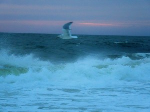 The Weather Had An Update With Rehoboth Beach Located In State Of Delaware